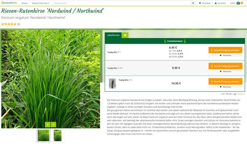Riesen-Rutenhirse Nordwind / Northwind online kaufen