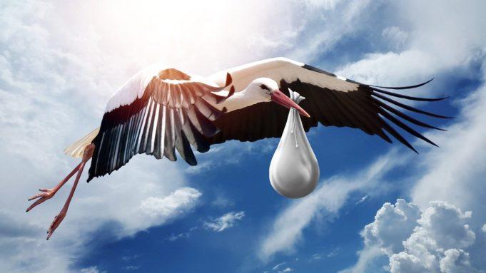 Der Storch bringt ein Baby
