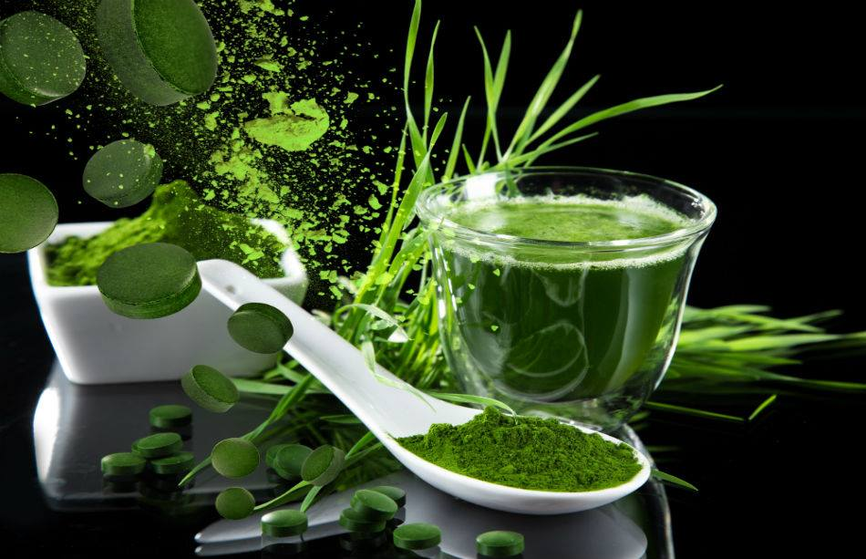 Superfood Chlorella-Alge