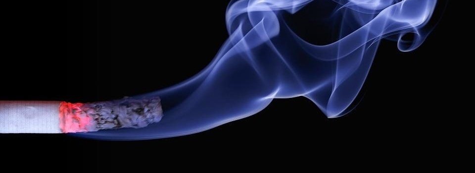 Die Geschichte des Tabaks